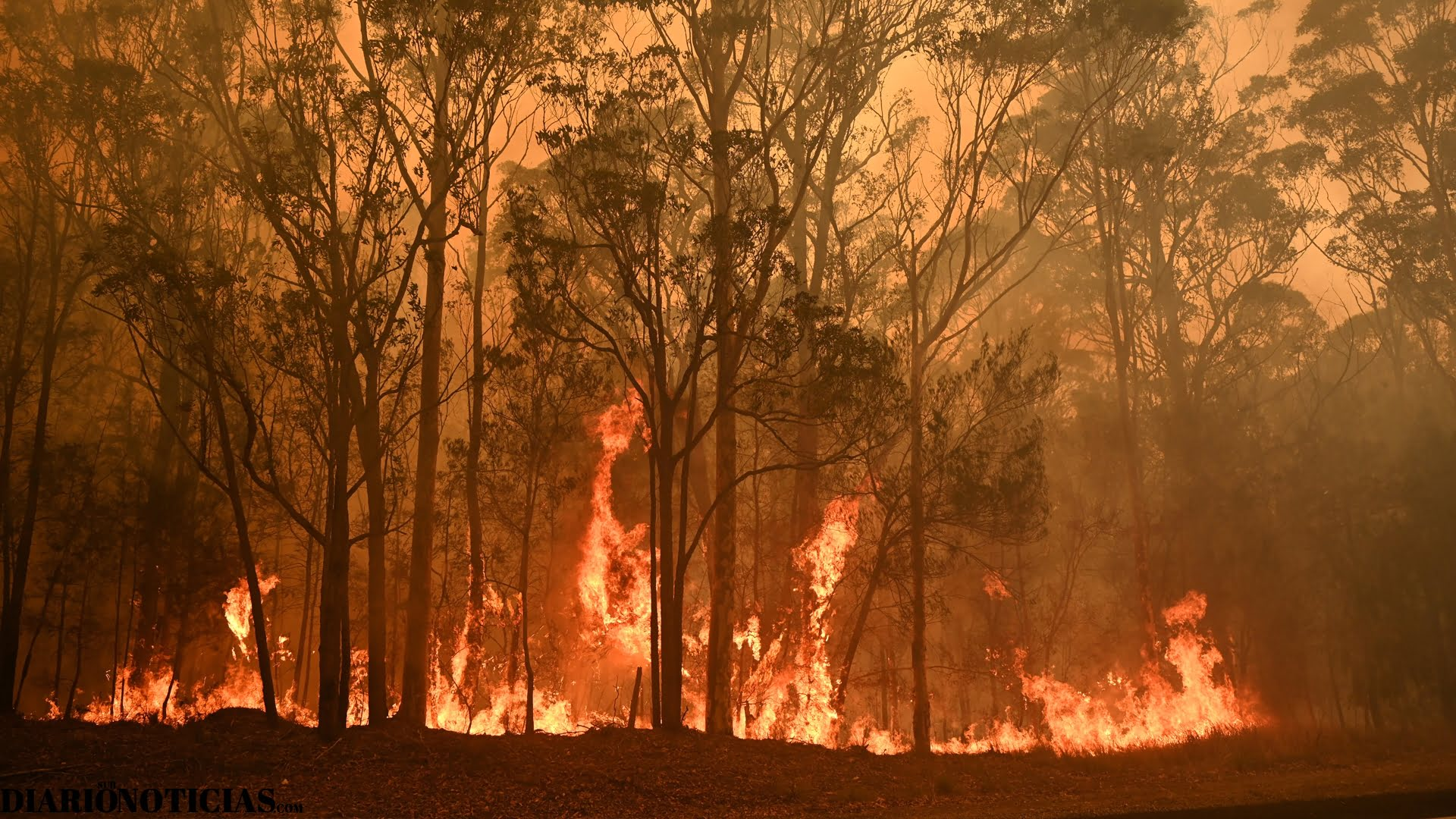 Photo of Humo de los incendios forestales de Australia llegaron a Chile y Argentina