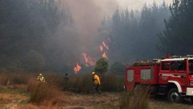 Photo of Decretan Alerta Roja para la comuna de Penco por incendio forestal